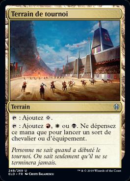 Terrain de tournoi