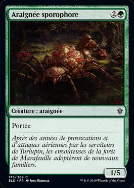 Araignée sporophore