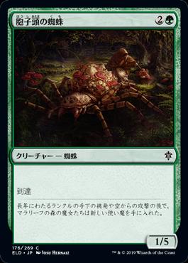 胞子頭の蜘蛛