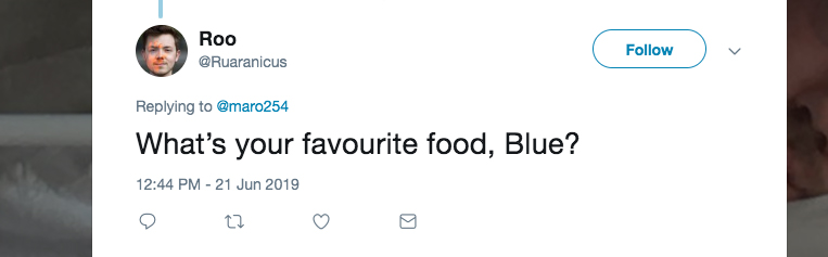 Q: What's your favourite food, Blue?