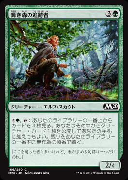 輝き森の追跡者
