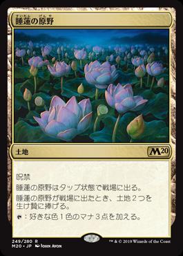 睡蓮の原野(Lotus Field)