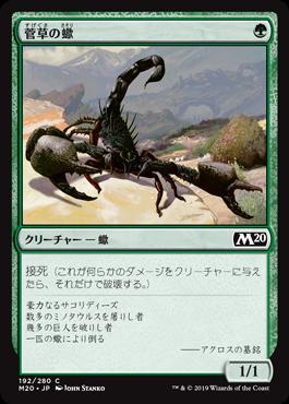 菅草の蠍(Sedge Scorpion)