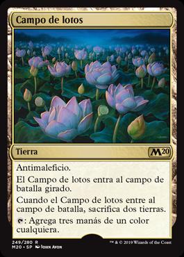 Campo de lotos