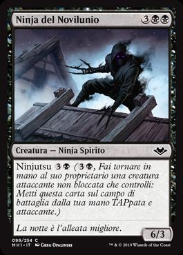 Ninja del Novilunio