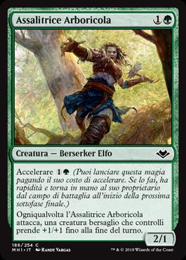Assalitrice Arboricola
