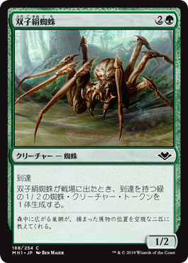 双子絹蜘蛛