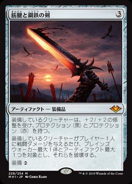 筋腱と鋼鉄の剣