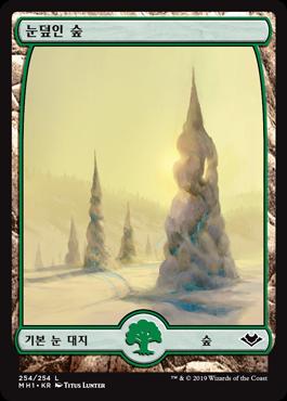 눈덮인 숲
