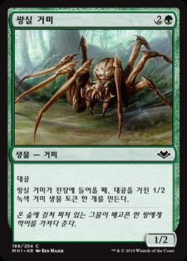쌍실 거미