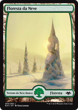 Floresta da Neve