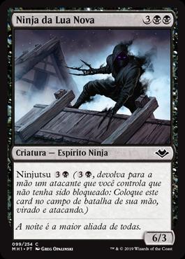 Ninja da Lua Nova