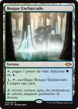 Bosque Encharcado