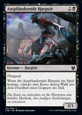 Aasplündernde Harpyie