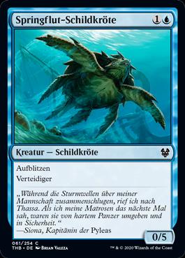 Springflut-Schildkröte
