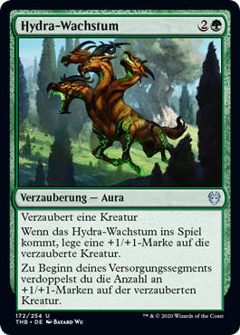 Hydra-Wachstum