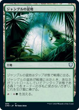 ジャングルの盆地
