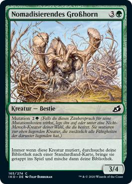 Nomadisierendes Großhorn