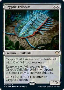 Cryptic Trilobite