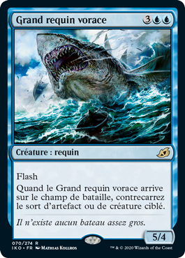 Grand requin vorace