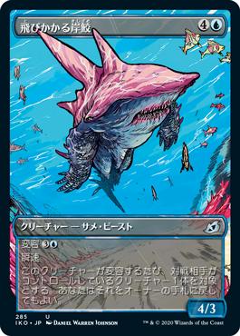 飛びかかる岸鮫