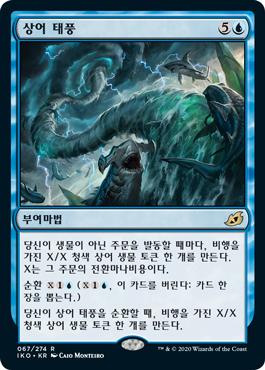 상어 태풍