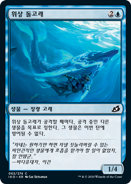 위상 돌고래