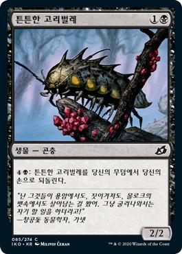 튼튼한 고리벌레