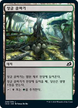 정글 골짜기