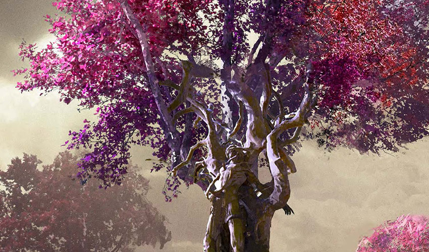 big tree with fuschia and purple leaves