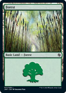 Elves Forest