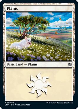 Dogs Plains