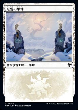 冠雪の平地