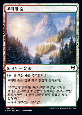 고지대 숲