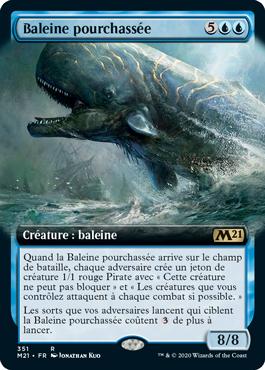 Baleine pourchassée