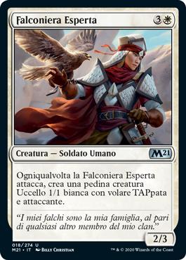 Falconiera Esperta