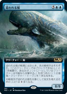 追われる鯨