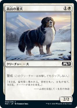 高山の番犬