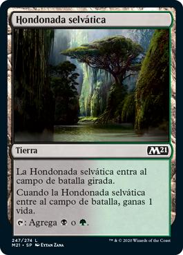 Hondonada selvática