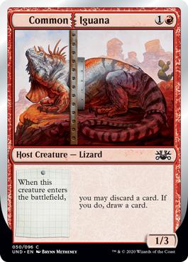 Common | Iguana