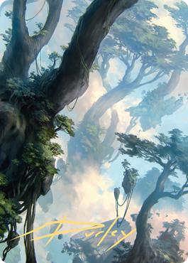 Forest 1 Art Card
