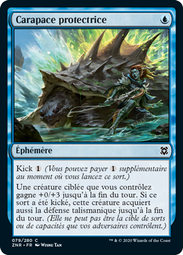 Carapace protectrice