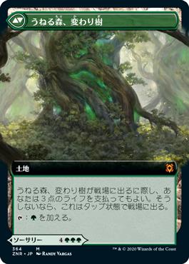 うねる森、変わり樹