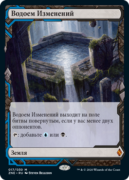 Expedition Morphic Pool