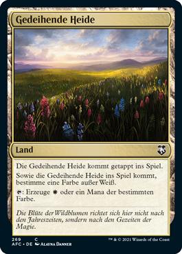 Gedeihende Heide