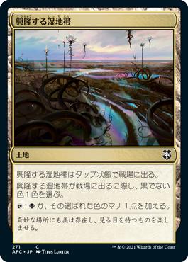 興隆する湿地帯