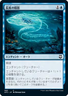 長魚の陰影