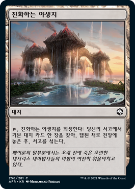 Evolving Wilds main set card