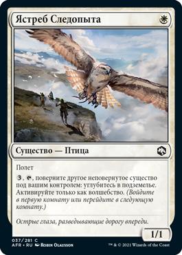 Ястреб Следопыта