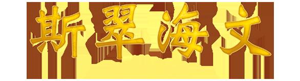 STX Set Logo